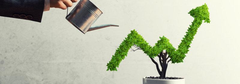 rast podjetja
